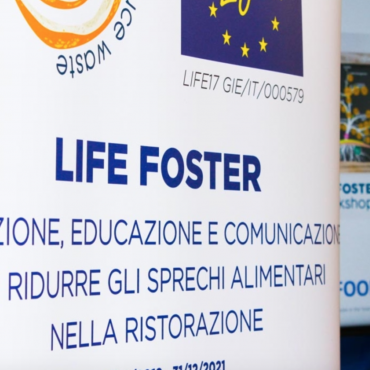 LIFE FOSTER